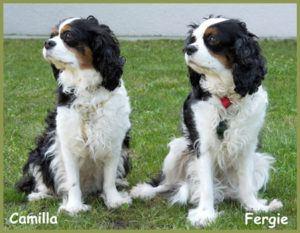Camilla-und-Fergie
