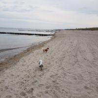 Prinzessin im Urlaub an der Ostsee