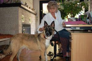 2020 07 31 Fea Hilft Frau Weiser DSC 0230bearb